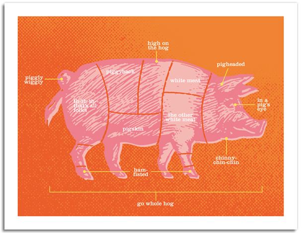 Designer Daddy - Pig Notecards - Cuts of Meat
