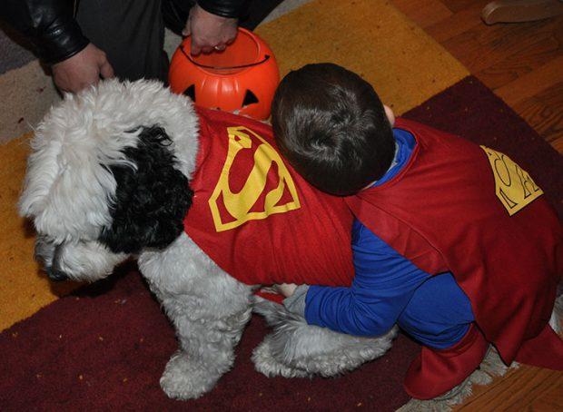 Superman and Krypto